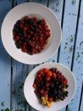 美丽的新近地被采摘的野生莓果 免版税图库摄影