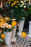 美丽的新鲜的大丁草、郁金香和玫瑰,在罐 库存照片