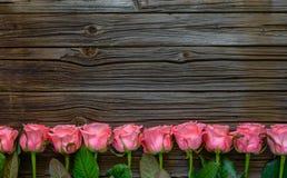 美丽的新鲜的桃红色玫瑰旁边边界  库存图片