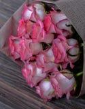 美丽的新鲜的桃红色玫瑰 免版税库存照片