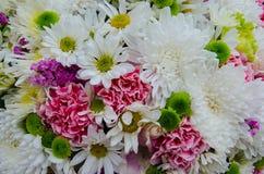 美丽的新鲜的罗斯和兰花桃红色花 库存照片