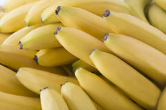 美丽的新鲜的香蕉 免版税库存照片