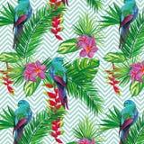 美丽的无缝的热带与棕榈叶、花和鹦鹉的密林花卉样式背景 抽象镶边 免版税库存照片