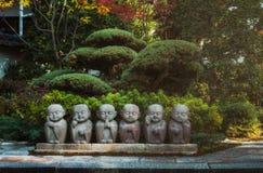 美丽的日本环境美化的pation在秋天的京都日本 免版税库存照片