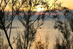 美丽的日落海 免版税图库摄影