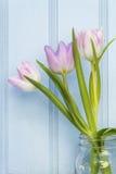 美丽的春天花静物画有木背景和ho 库存图片