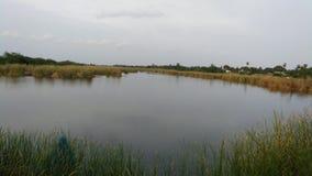 美丽的晚上湖 库存照片