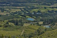 美丽的景色向种植园和池塘 库存照片