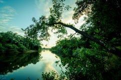 美丽的景色在湖 库存照片