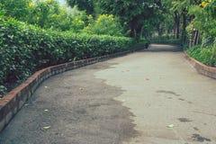 美丽的景色路或走道在公园包围与绿色自然 库存照片