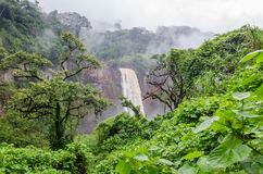 美丽的暗藏的Ekom瀑布深深在喀麦隆,非洲的热带雨林里 库存照片