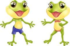 美丽的有人的特点的青蛙 免版税库存照片