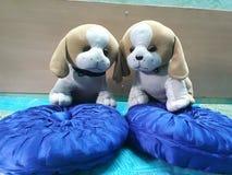 美丽的有吸引力的软的玩具两只可爱的小狗 免版税库存图片