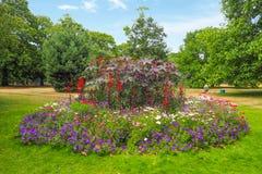 美丽的杂色的花圃在格林威治公园,伦敦 库存照片