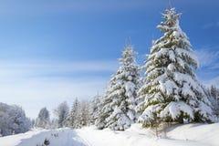 美丽的村庄芬兰森林红色s雪传说冬天 免版税库存图片