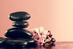 美丽的桃红色温泉在水湿Backgr的温泉热的石头开花 免版税库存图片