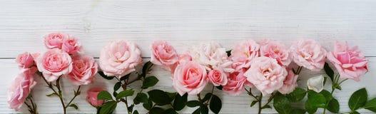 美丽的桃红色玫瑰花束在白色木背景的 顶视图 复制空间横幅 免版税库存图片
