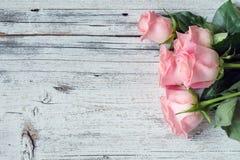 美丽的桃红色玫瑰 背景几何老装饰品纸张葡萄酒 免版税库存照片