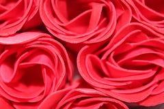 美丽的桃红色玫瑰 免版税库存图片