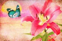 美丽的桃红色皇家百合和蓝色蝴蝶减速火箭的图象 库存图片