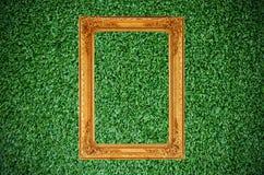 美丽的框架草绿色照片葡萄酒 免版税图库摄影