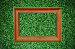 美丽的框架草绿色照片葡萄酒 库存照片