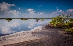 美丽的梅里特岛蜜饯池塘在黎明 免版税库存照片