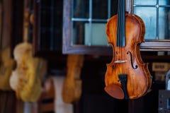 美丽的棕色木小提琴的串乐器特写镜头视图  免版税库存图片