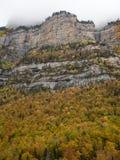 美丽的森林在一座有雾的山下的秋天 库存图片