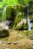 美丽的森林瀑布 免版税库存照片