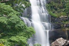 美丽的森林雨瀑布 库存图片