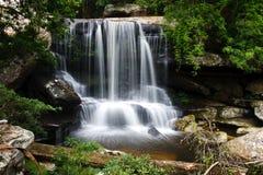 美丽的森林雨瀑布 免版税库存图片