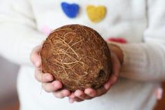 美丽的椰子在手上 免版税库存照片