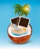 美丽的概念池假期妇女年轻人 棕榈树、照片和海滩睡椅 向量例证