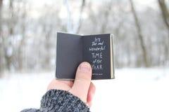 美丽的概念礼服女孩纵向佩带的空白冬天 它是年的最美妙的时期 递拿着与文本的一本书在背景-冬天公园 库存图片