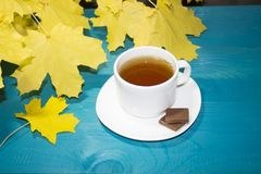 美丽的槭树在葡萄酒木背景边界设计离开 葡萄酒颜色口气-秋叶的概念在秋季ba的 免版税库存图片