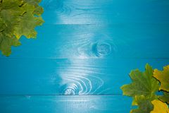美丽的槭树在葡萄酒木背景边界设计离开 葡萄酒颜色口气-秋叶的概念在秋季ba的 库存图片