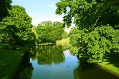 美丽的横向公园 免版税库存照片