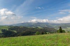 美丽的横向山 库存照片