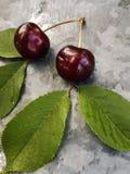 美丽的樱桃在桌上和在茶碟 樱桃和樱桃核,在板材挖坑 免版税库存图片
