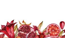 美丽的水彩无缝的刷子用石榴果子和花  免版税库存照片