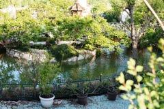 美丽的池塘和人行桥围拢与在一座古老城堡前面的树 胡同在有花和tre的美丽的庭院里 免版税图库摄影
