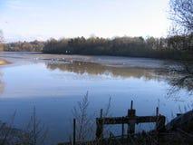 美丽的池塘在法国 库存图片