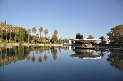 美丽的池塘 免版税库存图片