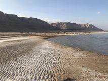 美丽的沙漠 免版税库存图片