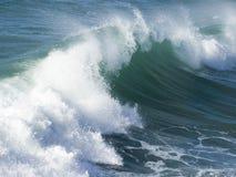 美丽的波浪 免版税库存图片
