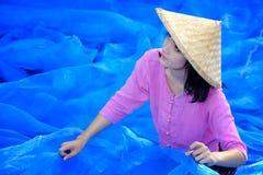 美丽的泰国妇女收获在蓝色净地板上的靛蓝 免版税库存照片