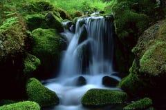 美丽的流的横向水 库存照片