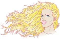 美丽的流的头发 库存图片