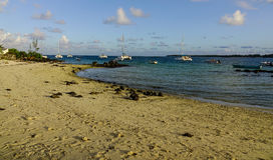 美丽的海在盛大白鹅,毛里求斯 免版税图库摄影